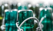 Free Green, Bottle, Glass Bottle, Water Stock Photography - 102643372