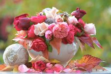 Free Flower, Pink, Flower Arranging, Floristry Royalty Free Stock Images - 102645299