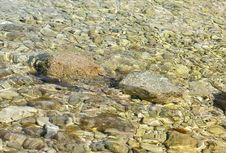 Free Pebbles Under Water Royalty Free Stock Photography - 10270317