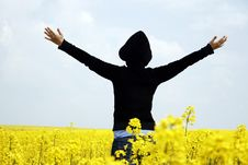 Free Young Girl In A Rape Field Stock Image - 10271471