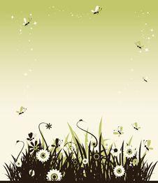 Free Summer Meadow Beautiful Stock Photo - 10275150
