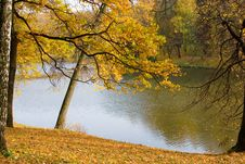 Free Autumn Colors In The Park Stock Photos - 10275443
