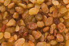 Free Golden Raisins Royalty Free Stock Photos - 10276018
