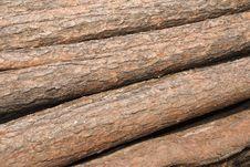 Free Logs Stock Photo - 10276060