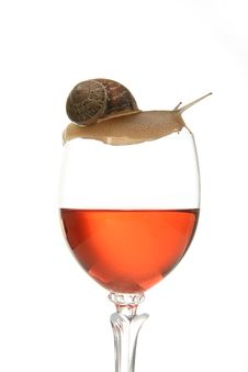 Free Snail On Glass Of Wine Stock Photography - 10276372