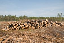Free Sawmill Royalty Free Stock Photos - 10276558