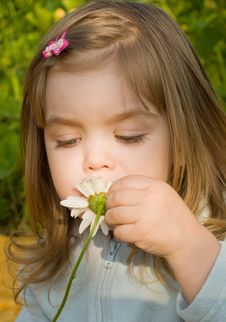 Free Little Girl Smelling Camomile Stock Photo - 10276690