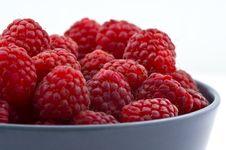 Free Raspberry Royalty Free Stock Photography - 10279117