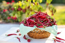 Free Vegetable, Food, Local Food, Produce Stock Photos - 102707133