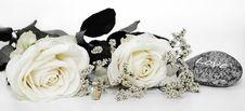 Free Flower, White, Cut Flowers, Flower Bouquet Stock Image - 102707861