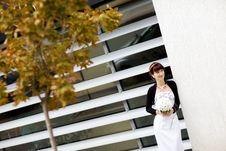 Free Modern Bride Royalty Free Stock Image - 10280846