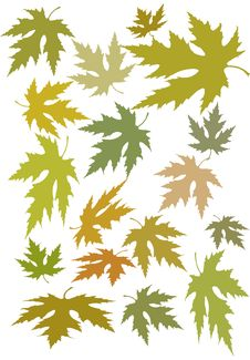 Free Autumn Leaves Royalty Free Stock Image - 10280886