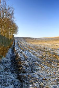 Free Winter Landscape With Trees Snow And Fence Royalty Free Stock Photos - 10281328