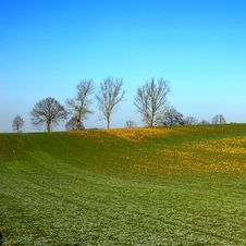 Free Landscape With Tree And Blue Sky Stock Photography - 10281502