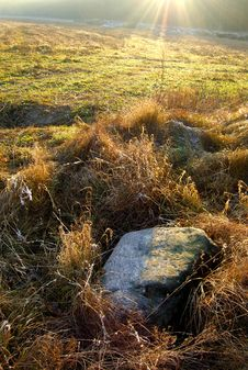 Free Stone On Meadow And Sunbeam Royalty Free Stock Photos - 10281708