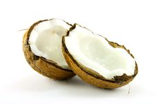 Free Coconut Stock Photography - 10281882