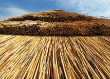 Free Thatched Roof Of Summer House Stock Photo - 10282420
