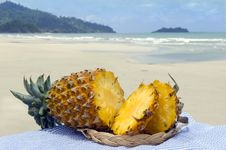 Free Pineapple Against The Sea. Stock Photography - 10282502