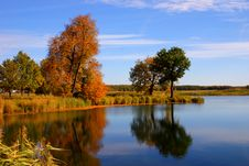 Free Reflexion Of Autumn Royalty Free Stock Image - 10283316