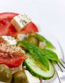 Free Mixed Fresh Salad With Tomatoes Royalty Free Stock Photos - 10285518