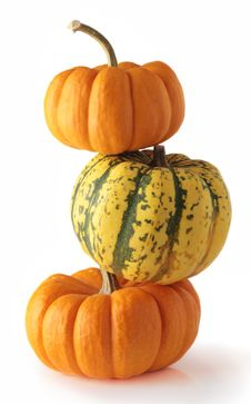 Three Colorful Pumpkins Stock Images