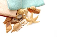 Free Very Beautiful Seashells On Towel Royalty Free Stock Image - 10287766