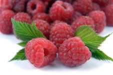 Free Raspberry With Leaves Stock Images - 10288004