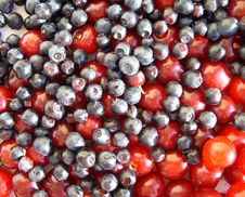 Free Berries Royalty Free Stock Photography - 10288887