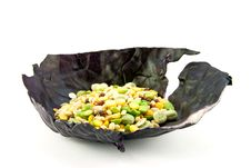 Free Soup Pulses In A Cabbage Leaf Stock Photo - 10289660