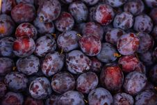 Free Fruit, Produce, Food, Local Food Stock Photography - 102880202