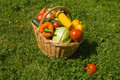 Free Basket With Vegetables Royalty Free Stock Photos - 10293788