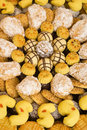 Free The Different Biscuits Royalty Free Stock Photo - 10298625