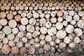 Free Fire Wood Stock Photos - 10299473