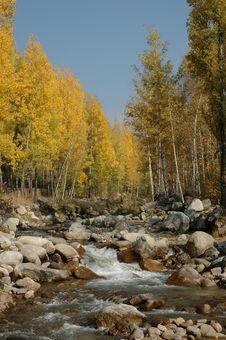 Free Autumn Landscape Stock Images - 10292834