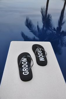 Free The Groom Has Taken The Plunge Royalty Free Stock Photos - 10292898