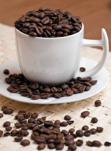 Coffee Beans In A White Cup Royalty Free Stock Image
