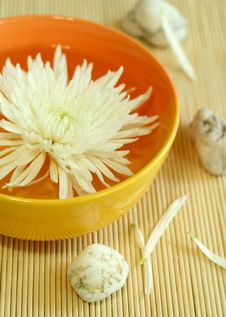 Bowl Of Water With Flower And Stones Stock Image