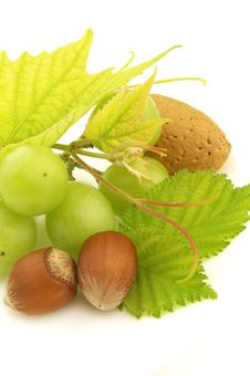 Free Grapes And Filbert Royalty Free Stock Image - 10294806