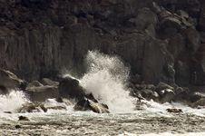 Free Volcanic Coastline In  Azores Royalty Free Stock Photos - 10295648