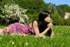 Free Young Woman With Flowers Stock Photography - 10295762