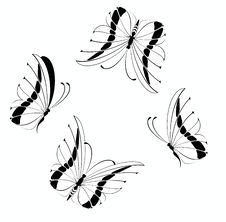 Free Beautiful Butterfly Stock Photos - 10297413