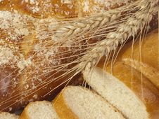 Free Bread  And Ears Royalty Free Stock Photo - 10298175