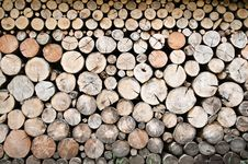 Free Fire Wood Stock Photos - 10299473