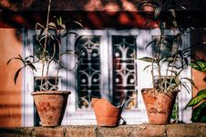 Free Blur, Broken, Ceramic, Clay, Royalty Free Stock Photos - 102998198