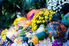 Free Bright, Celebration, Colors Stock Image - 102998311