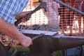 Free Blacksmith 4 Royalty Free Stock Photography - 1035737