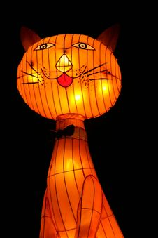 Free Cat Lantern Stock Photography - 1031732