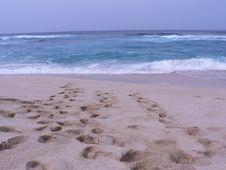 Free Suset Beach Stock Photo - 1031850