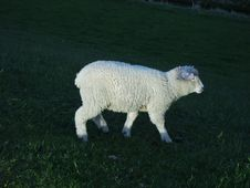 Free Lighted Lamb Stock Images - 1033164