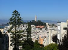 Free Coit Tower And Telegraph Hill Royalty Free Stock Photo - 1034835